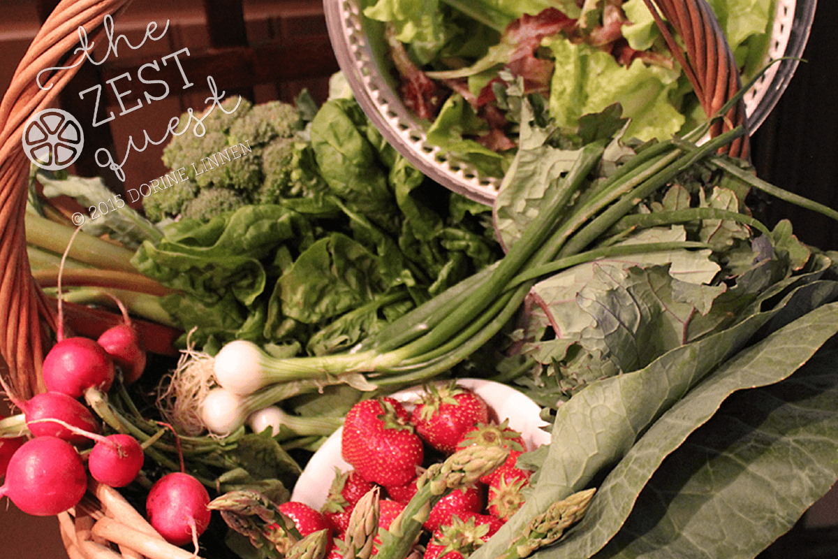 CSA-Farm-Share-2015-Week-1-one-half-vegan-rhubarb-broccoli-cabbage-mesclun-onions-kale-2-The-Zest-Quest