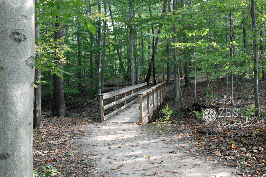 Hiking-Challenge-2015-Ohio-Hike-2-Hudson-Wood-Hollow-Downy-Loop-Path-over-Bridge-2-The-Zest-Quest