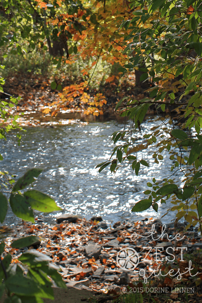 Hiking-Challenge-2015-Ohio-Hike-4-Bike-and-Hike-Trail-Munroe-Falls-Cuyahoga-River-view-fall-colors-2-The-Zest-Quest