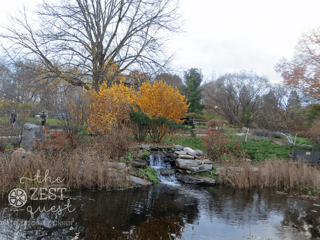Hiking-Challenge-2015-Ohio-Hike-6-Nature-Realm-Water-Fall-in-Herb-Garden-2-The-Zest-Quest
