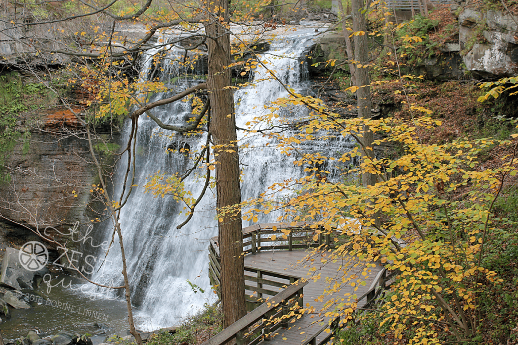 Brandywine Falls in the CVNP is gorgeous with crisp water flow with fall leaf color changing around it.