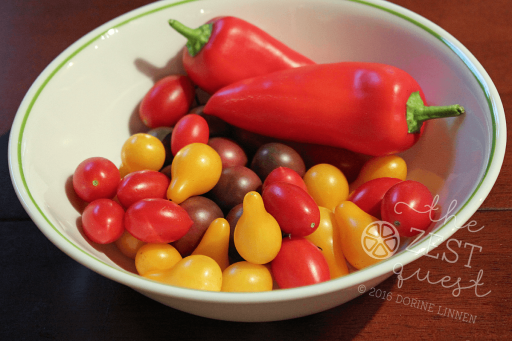 Garden Harvest September 2016 includes Yellow Pear, Black Cherry and Juliet Tomatoes with Gypsy Peppers allowed to ripen to red.