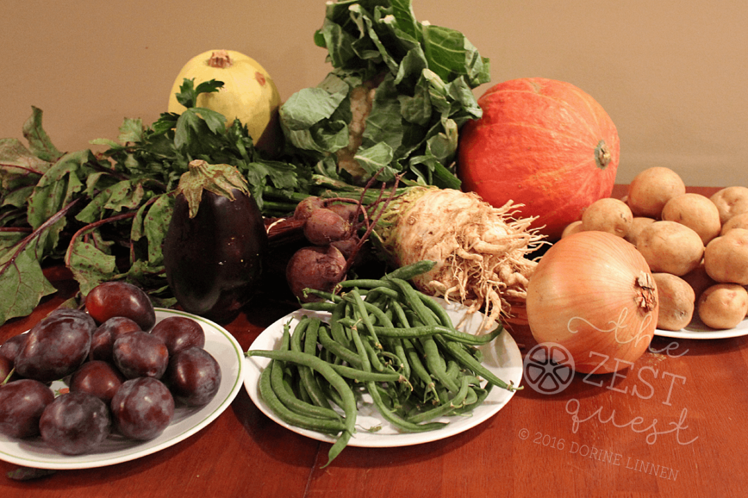 Ohio Farm Share Summer Week 20 features Celeriac Root and Red Kuri Squash.